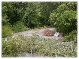 Urban Farm Site Before BAIB